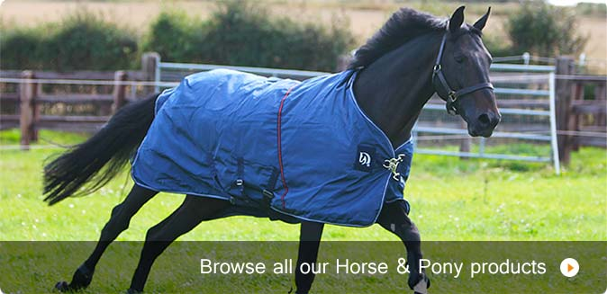 Horse and pony products