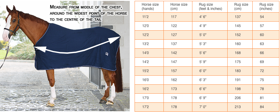 Horse and pony size guide